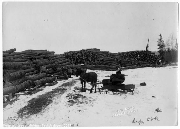 Mrs. J.W. Nara at log landing of Portage Lake near Dreamland