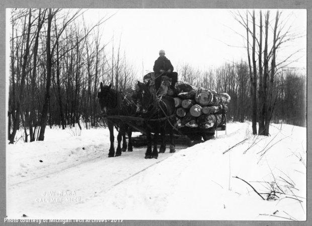 Logging 1920's, Nara woods, 3 mi. from Dreamland area